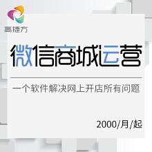 威客服务:[120019] 微信商城运营