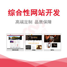 威客服务:[125191] 综合型网站开发