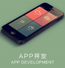 威客服务:[125582] APP开发