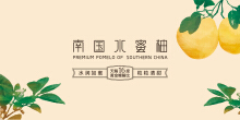 南国水蜜柚 / 包装设计