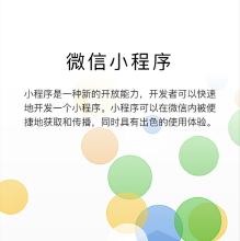 威客服务:[126163] 微信小程序定制化开发-微信商城类-工具类-SaaS类-新闻类