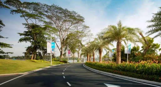 城市道路景观绿地设计