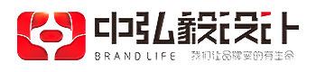 中弘毅品牌设计