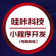 威客服务:[117533] 小程序开发制作 门店电器电商类小程序引流拓客定制小程序