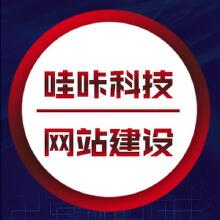 威客服务:[118116] 网站建设定制开发模板仿站 电商建站 网站建设微信小程序定制开发公众号运营