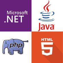 威客服务:[131110] 软件程序开发