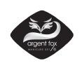 美容工具小银狐商标
