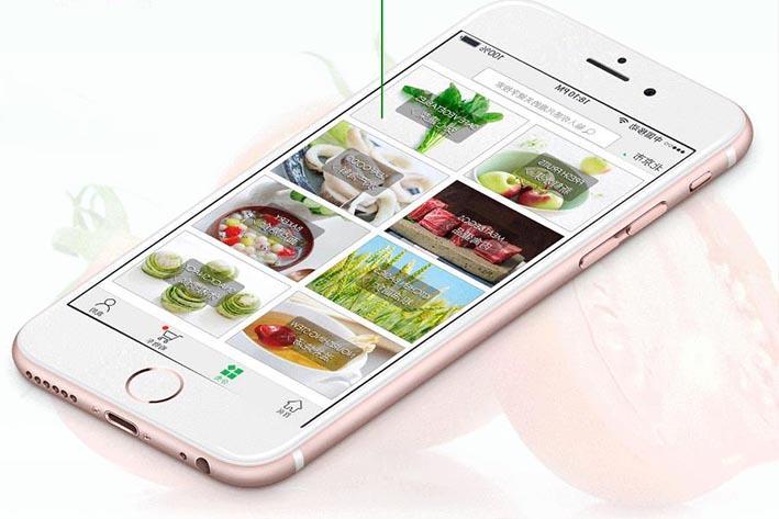 生鲜果蔬电商APP开发