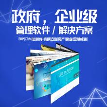 威客服务:[132651] 政府、企业级管理软件、解决方案   ERP|CRM|进销存|持续运维|资产|物业|金融核销|