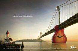 入门弹哪种吉他好?Taylor吉它平面广告设计