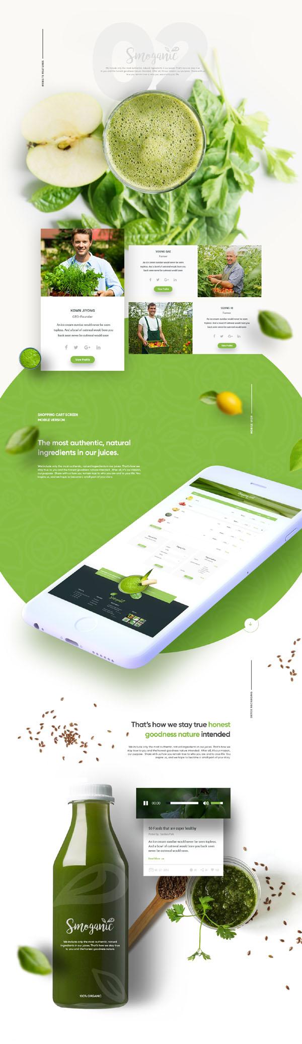 国外某绿色环保系风格的Smoganic网页界面设计欣赏