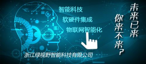 杭州绿视野智能科技有限公司