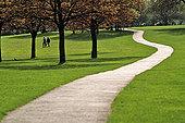 威客服务:[10972] 城市绿地规划