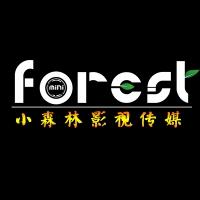 小森林影视传媒