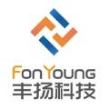 上海丰扬信息科技有限公司