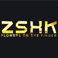 指上花开©品牌设计