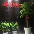 湖南成长品牌营销策划有限责任公司