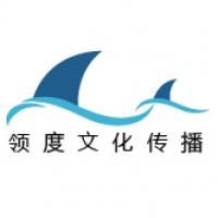 上海领度文化