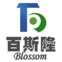 天津百斯隆网络技术开发有限公司