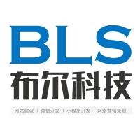 滁州布尔信息服务有限公司