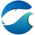 青岛湜鱼网络科技有限公司