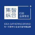 广州集智纵合品牌设计