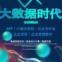 原生态APP软件开发,小程序开发