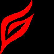 山西江语科技有限公司
