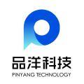 山东品洋网络技术有限公司