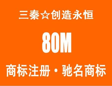 北京商标注册 驰名商标 商标异议答辩