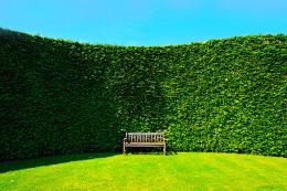 怎样设计屋顶园林景观 屋顶园林景观设计原则和意义