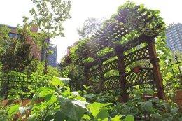 如何营造别墅庭院景观设计中的水景