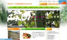 机构组织网站建设