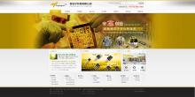 信安电子企业网站设计