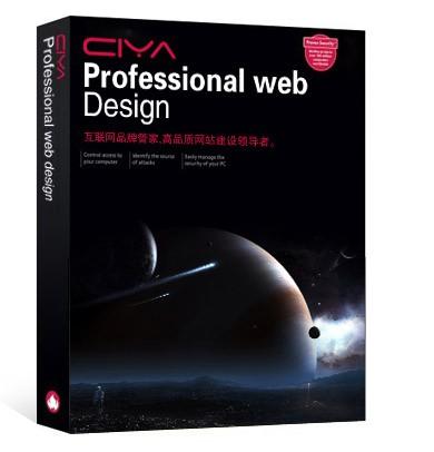 品牌网站设计