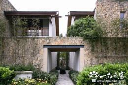 别墅庭院景观需如何设计 别墅景观设计植物配置技巧