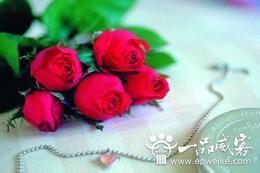 三八妇女节祝福语大全  2014最新三八妇女节祝福语