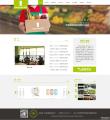 连锁超市网站建设方案-番坊网站设计