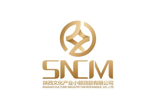 陕西文化投资集团小额贷款公司