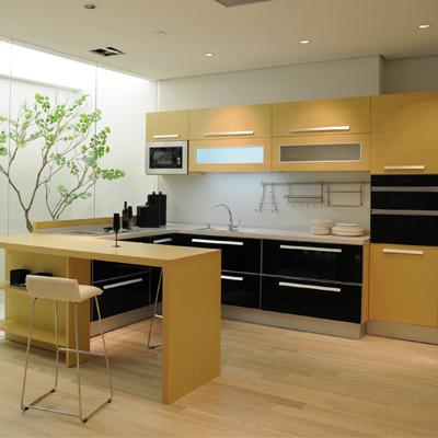 定制衣柜 橱柜 电视柜 护墙板 书柜 木门 吊顶设计