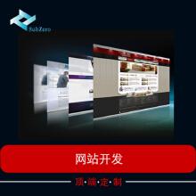 北京朝阳专业资讯网站web开发