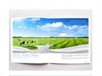 云南牧本集宣传画册设计