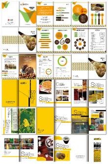锐晟设计室宣传画册案例