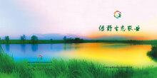 绿野生态农业画册设计