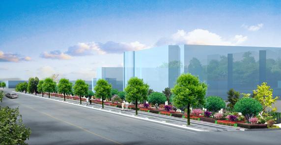 道路景觀綠化