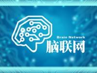 """寻""""TT脑联网""""logo设计"""