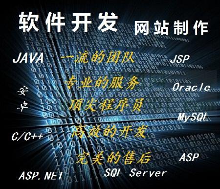软件制定开发