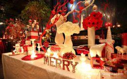 圣诞节婚礼策划方案经典案例