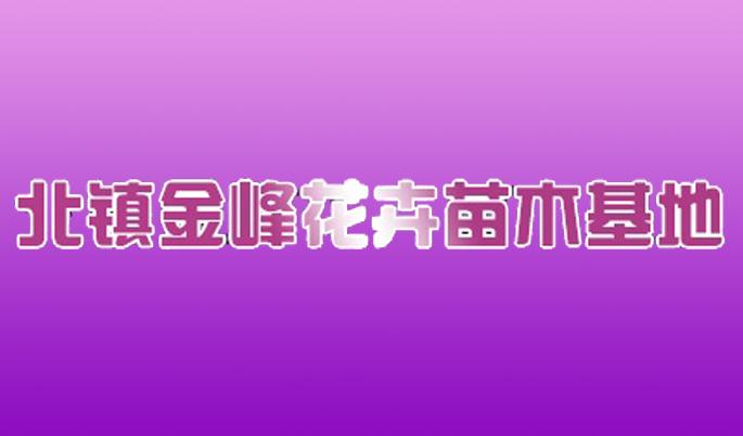 北鎮金峰工藝品有限責任公司
