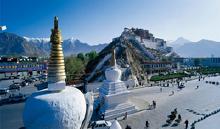 西藏林芝盛康 品牌推广